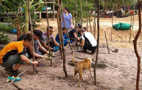 Social Studies in Thailand and Cambodia