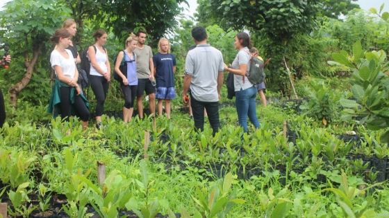 Social Entrepreneurship in Bali, Indonesia